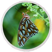 Gulf Fritillary On Butterfly Bush Round Beach Towel
