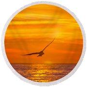 Gull At Sunrise Round Beach Towel