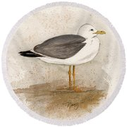 Gull Round Beach Towel