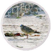 Gull On The Beach Round Beach Towel