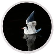 Gull On The Water Round Beach Towel by Michal Boubin