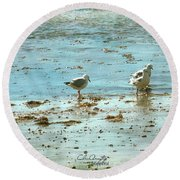 Gulls On The Edge Round Beach Towel
