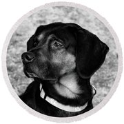 Gus - Black And White Round Beach Towel