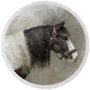 Gypsy Vanner Round Beach Towel by Kathy Russell