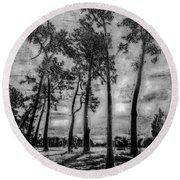 Hagley Park Treescape Round Beach Towel