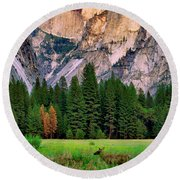 Half Dome And Deer Round Beach Towel