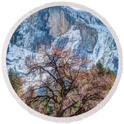 Half Dome Meadow Tree Winter Round Beach Towel