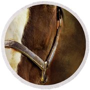 Half Face Horse Portrait Round Beach Towel