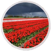 Half Side Red Tulips Field Round Beach Towel by Mihaela Pater