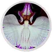 Round Beach Towel featuring the photograph Halo Orchid by Randy Rosenberger