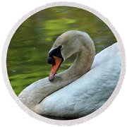 Hammy Swan Round Beach Towel by Ronda Ryan