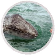 Hand Across The Waters Round Beach Towel