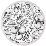 Hand Drawn Background Of Fresh Tallow Plums Round Beach Towel
