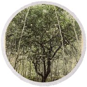 Hand Of God Apple Tree Poster Round Beach Towel