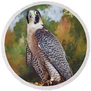 Round Beach Towel featuring the photograph Hand Of The Falconer by Nikolyn McDonald