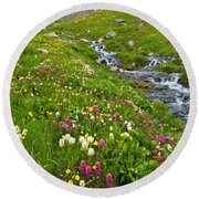 Handie's Peak And Alpine Meadow Round Beach Towel