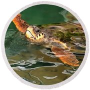 Hands Up For A Plastic Free Ocean Loggerhead Turtle Round Beach Towel