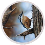 Hangin Out - Nuthatch Round Beach Towel