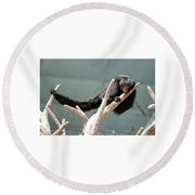 Hanging Loose Round Beach Towel