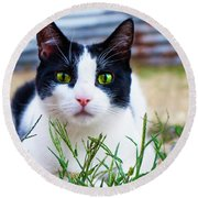 Happy Cat Round Beach Towel