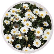 Happy Daisies- Photography By Linda Woods Round Beach Towel
