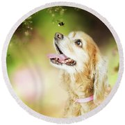 Happy Dog Outdoors Looking At Bee Round Beach Towel