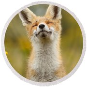Happy Fox Round Beach Towel