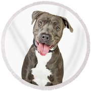 Happy Friendly Smiling Pit Bull Dog  Round Beach Towel