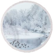 Round Beach Towel featuring the photograph Happy Geese by Darren White