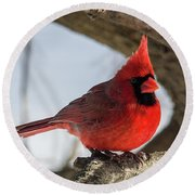 Happy Mister Cardinal Round Beach Towel