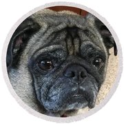Happy Pug Round Beach Towel by Russell Keating