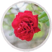 Round Beach Towel featuring the photograph Happy Red Flower by Raphael Lopez