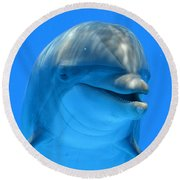Happy Smiling Dolphin Round Beach Towel by Richard Bryce and Family