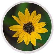 Happy Sunflower Round Beach Towel by Kenneth Albin