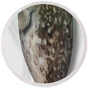 Harbour Seal - Harbor Seal - Phoca Vitulina - Phoque Commun - Foca Comune - Pinniped - Sleeping  Round Beach Towel
