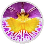 Round Beach Towel featuring the photograph Hardhat Soldier/orchid by Penny Lisowski
