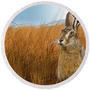 Hare In Grasslands Round Beach Towel