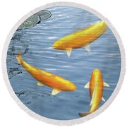 Harmony - Golden Koi Round Beach Towel by Gill Billington