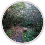 Have A Seat In The Wetlands Round Beach Towel