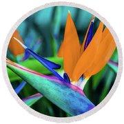 Hawaii Bird Of Paradise Flowers Round Beach Towel