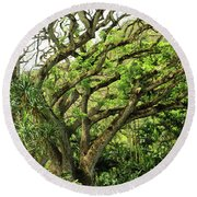 Hawaii Tree-bard Round Beach Towel