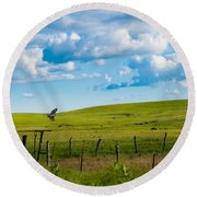 Hawk And Flint Hills Round Beach Towel