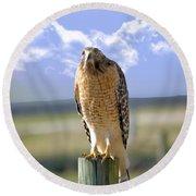 Hawk On A Fencepost Round Beach Towel