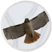 Hawk Overhead Round Beach Towel
