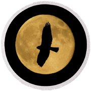 Round Beach Towel featuring the photograph Hawk Silhouette by Shane Bechler