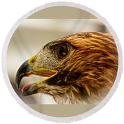 Hawk's Eye Round Beach Towel
