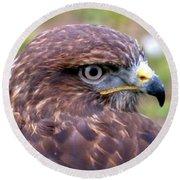 Hawks Eye View Round Beach Towel