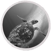 Hawksbill Turtle Ascending Round Beach Towel
