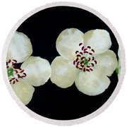 Hawthorn Flowers Round Beach Towel