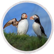 He Went That Way Round Beach Towel by Betsy Knapp